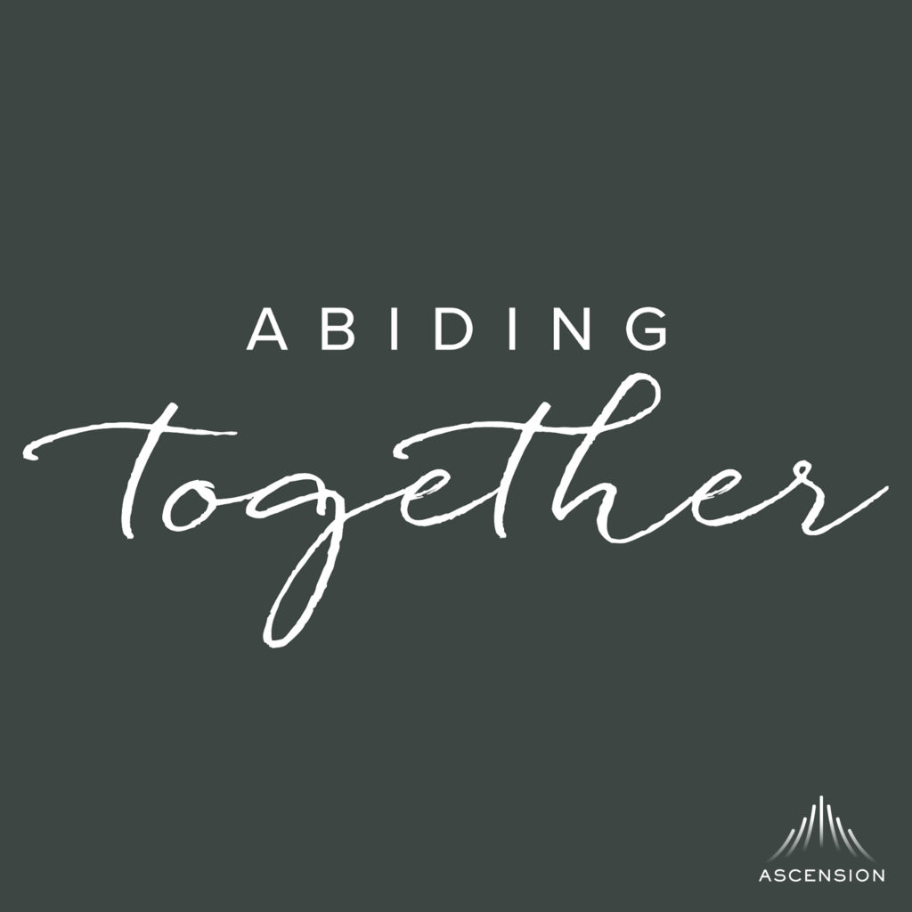 Abiding Together Archives - Ascension Press Media