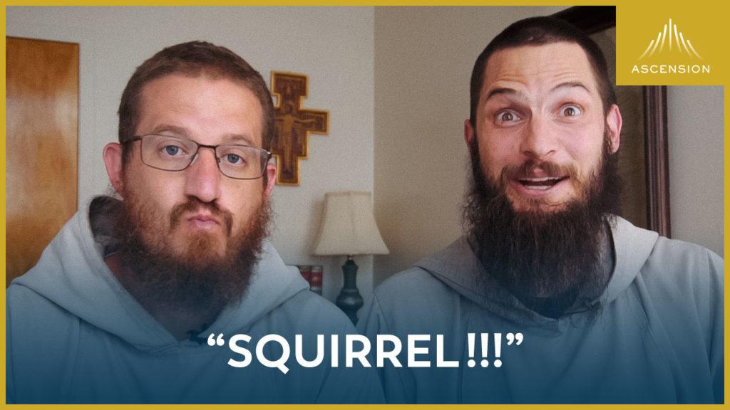 """""""Squirrel!"""""""